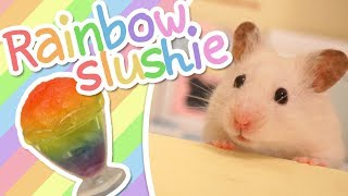 🌈 Rainbow Slushie | HAMSTER KITCHEN 🌈