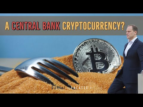 A Central Bank Cryptocurrency? What Does It Mean?