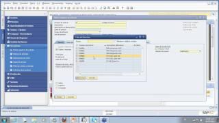 Introducción a SAP Business One