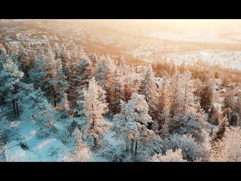 Das Abenteuer Norwegen beginnt #1 | skatepunk2425
