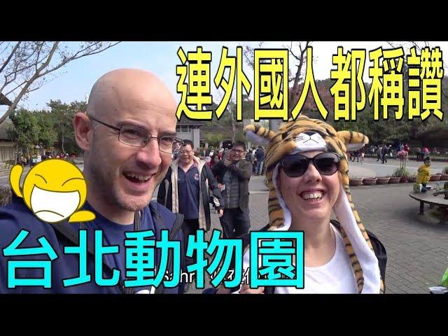 土耳其外甥第一次看熊貓【Amazing Taipei Zoo】(Türkçe Altyazı)