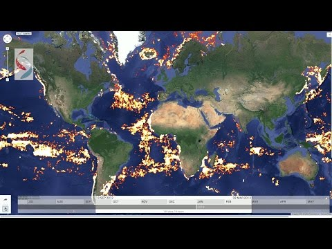 Global Fishing Watch | Technology Illuminating the Global Fishing Fleet