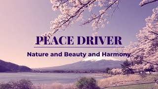 Japan peace and culture rally mission by juan henri tamenne