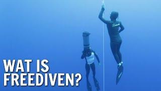 Fragment van De Buitendienst over duiken. Matthijs en Nienke zoeken uit wat freediven is. Wil je weten wie De Buitendienst maakt ...