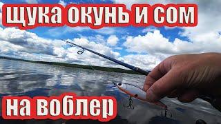 ЩУКА ОКУНЬ И СОМ НА СПИННИНГ С БЕРЕГА рыбалка 2021