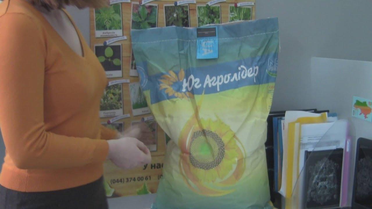 Сегодня купить семена подсолнечника в украине не является проблемой. Главное не ошибиться в выборе достойного партнера, коим может стать наша агрофирма. Мы предлагаем вам не только семена подсолнечника, цена которых радует своей доступностью, мы предлагаем идеальный посевной.