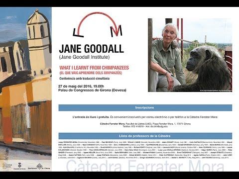 Jane Goodall | What I learnt from chimpanzees | Universitat de Girona