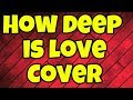 How deep is your love | Cover