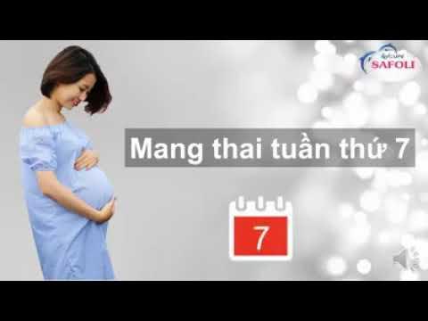 Thai nhi tuần thứ 7 có những thay đổi gì?