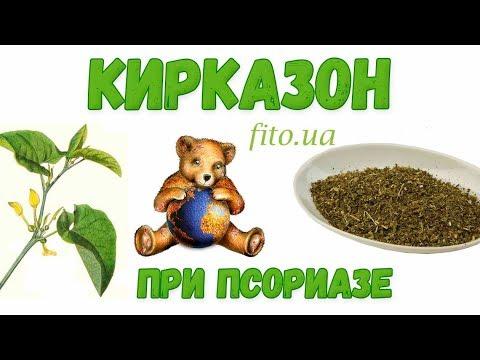 Кирказон: лечебные свойства и противопоказания от псориаза и др. болезней