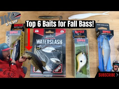 Top 6 Baits For Fall Bass!