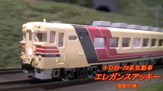 【Nゲージ鉄道模型】キロ59・29系気動車「エレガンスアッキー」