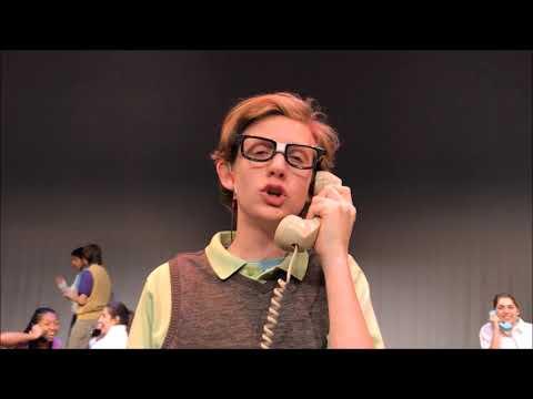 ACHS Bye Bye Birdie (Music Video)