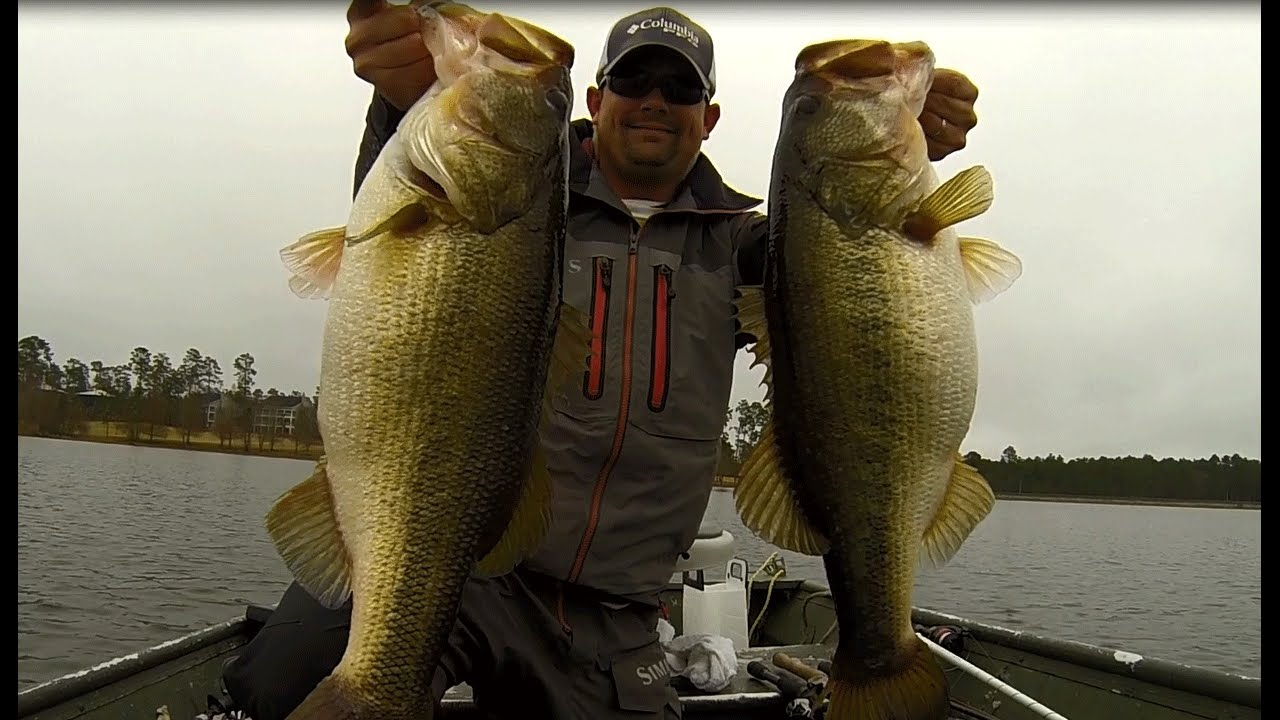 Two big bass caught on the same cast alabama rig double for Big bass fishing