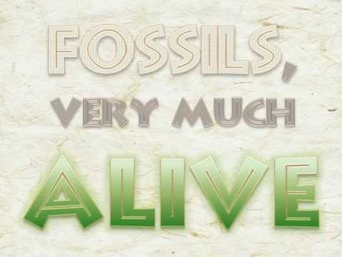dating dinosaurs fossils