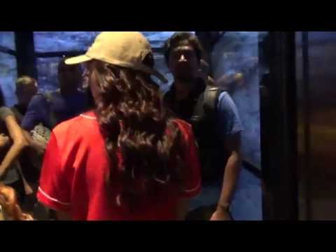 one world observatory elevator ride show