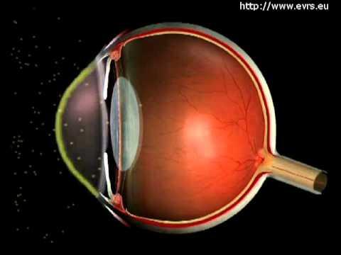 hqdefault - L'œil rouge: