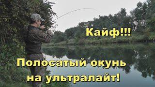 Польский окунь на украинские приманки Рыбалка на ультралайт