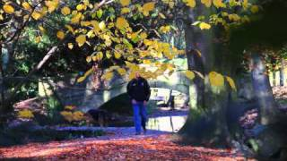 Canon 550D Test - Autumn Parklife
