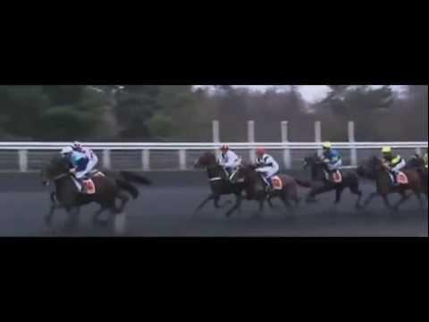 Prix De Vincennes 2012_Vision Intense 1:14,1_Mlle N. Henry