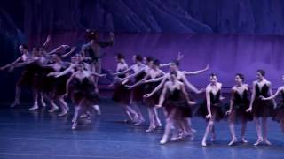 NYC Ballet's Marika Anderson on Balanchine's SWAN LAKE
