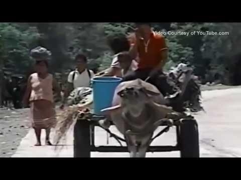 Видео Mount pinatubo case study