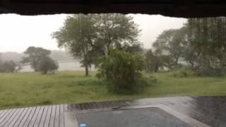 Heavy rain on Safari in South Africa