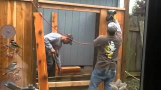Fence Trellis Project