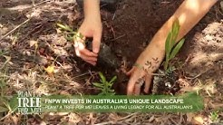 Plant a Tree for Me! Volunteering Day with FNPW