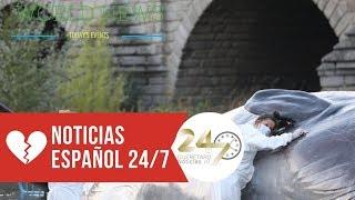 ¿Cómo es posible que haya aparecido un cachalote varado en Madrid Río?