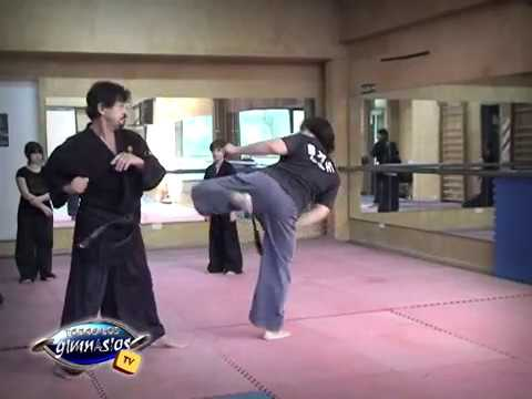 técnicas-de-piernas-en-defensa-en-hapkido,-maestro-lagier