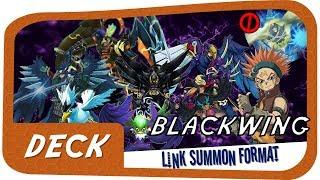 No Gofu? No Problem! | Blackwing Needlefiber Deck Link Format | February 2018 Ban List