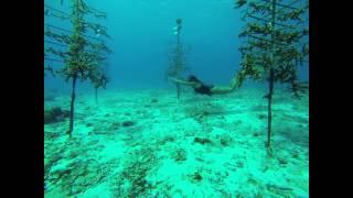 Karol Meyer Freediving Adventure 2013 - Buddy Dive Resort