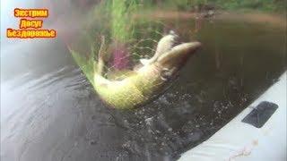 Чумовая Рыбалка В поисках СОМА на реке ЛУГА!Лужский район