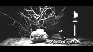 İndigo - Sokak Köpeği (Video Klip)