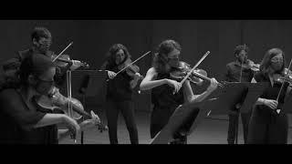 Camerata Penedès, Simfonia Simple de Britten