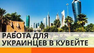 Как в Кувейте относятся к украинскому народу – Утро в Большом Городе