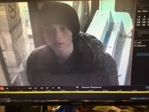 Victoria police searching for vandalism suspect