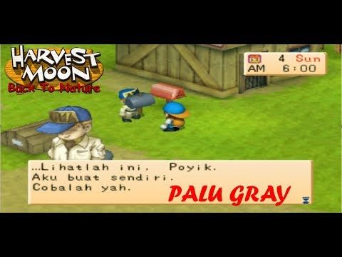 Harvest Moon Back To Nature - palu gray