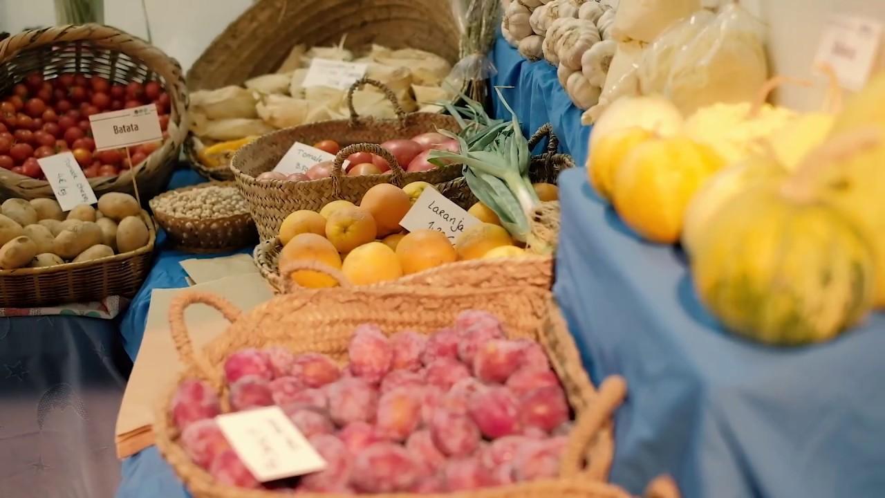 video dieta mediterranea