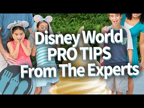 Disney World Pro Tips From The Experts