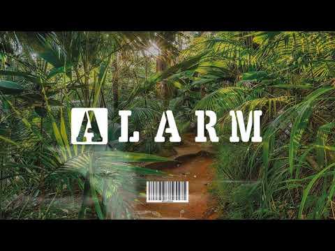 "[FREE] Afro Beat Instrumental 2019   ""ALARM"" – (Afropop Type Beat)"