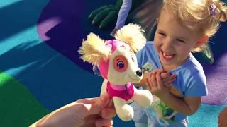Щенячий Патруль PAW Patrol все серии подряд Видео для Детей Малышей Щенячий Патруль