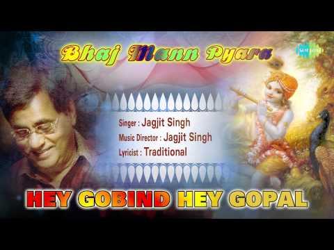 Hey Gobind Hey Gopal | Hindi Devotional Song | Jagjit Singh