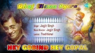 Hey Gobind Hey Gopal | Hindi Devotional Song | Jagjit Singh