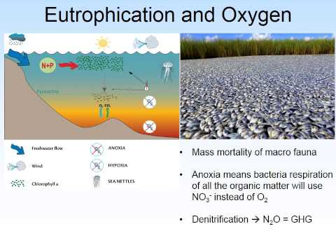 ChemLec6 Marine pollution ALT2015naration