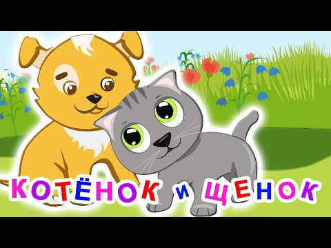 Мультфильм про собаку и кошку