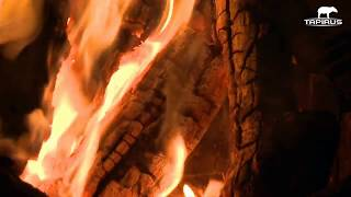 Campfire Sounds 1 Hour - Burning Wood Crackling Fire Effects - Easy Sleeping Cozy Virtual Fireplace