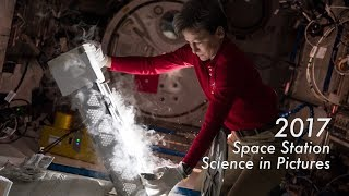2017 Space Station Science in Pictures