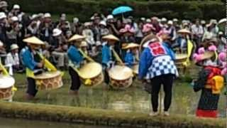 Repeat youtube video OKAYAMA-KORAKUEN TRADITIONAL RICE-PLANTING FEST.
